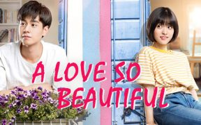 A Love So Beautiful Soundtrack Songs List